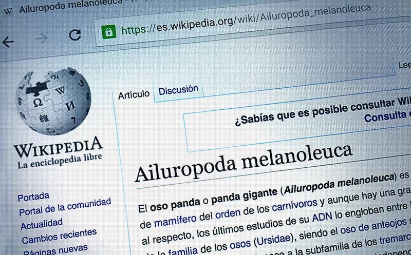 Google vs. Wikipedia (CC)-by Alvy