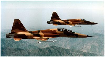 En los aviones militares, su decoración ayuda a hacerlos invisibles