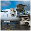 Un avión combi debe llevar una serie adicional de medidas de seguridad