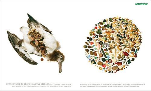 Albatros por Publicis Mojo Auckland para Greenpeace