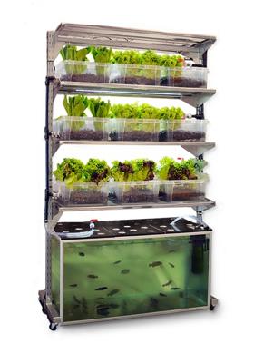 Un sistema autónomo que genera una comida al día