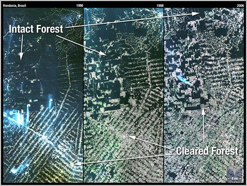 Landsat 5 / Rondonia