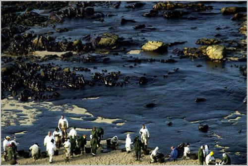 Voluntarios luchando contra la marea negra del Prestige