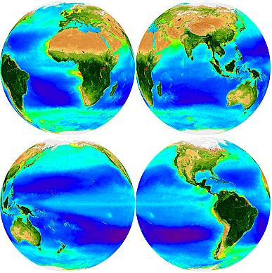 Seawifs Biosphere Globe-1