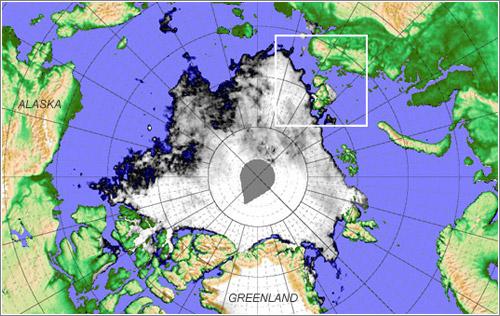 Artico-Isla