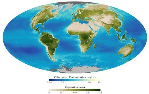 Evolución de la biosfera global