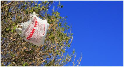 Bolsa Plástico