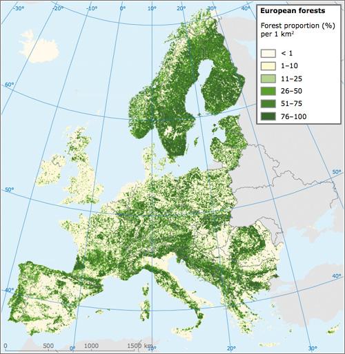 Informe - Bosques de Europa