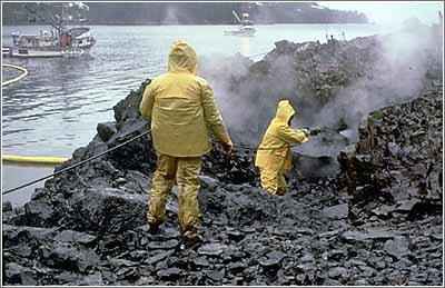 Tareas de limpieza en la costa de Alaska