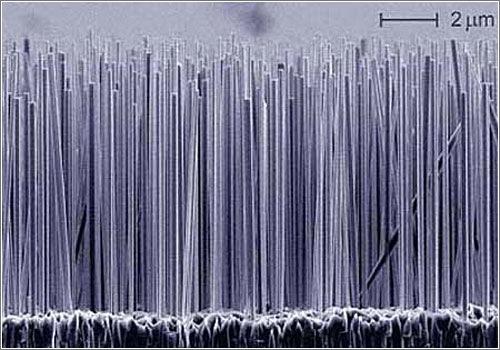 Nanocables de silicio