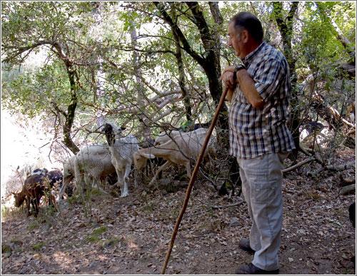 pastor-cabres.jpg