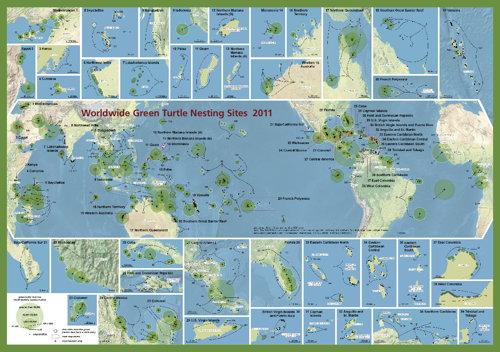 Swot Green Turtle Nesting Sites