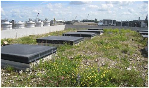 Jardines en tejados