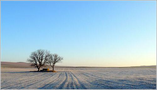 Cuatro estaciones: invierno / Cuatro estaciones: Otoño / Aidan