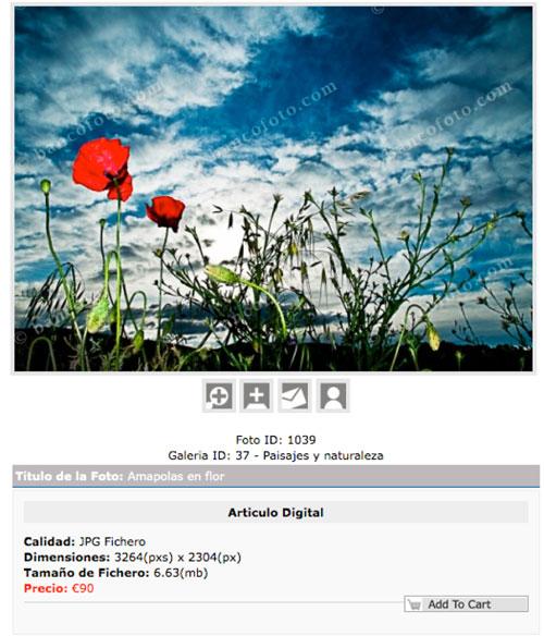 Una de las imágenes de bancofoto.com or Antonio Casas