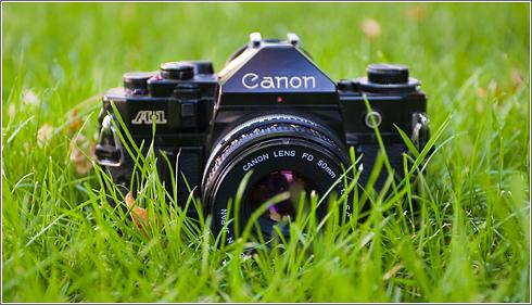 Fotografía más verde
