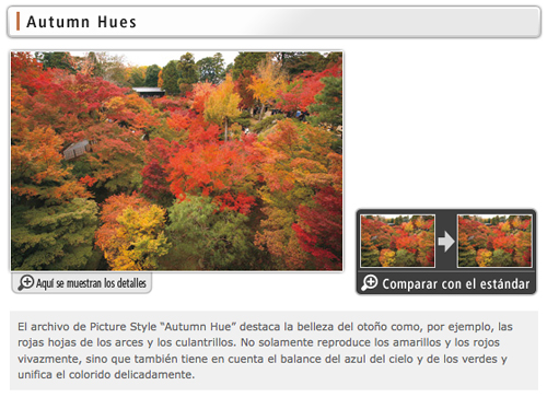 Modo Autumn Hues PictureStyle