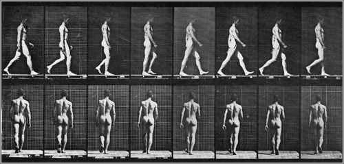Hombre caminando, de Eadweard Muybridge