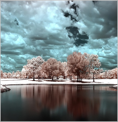Infrared-Tree-Lake-2