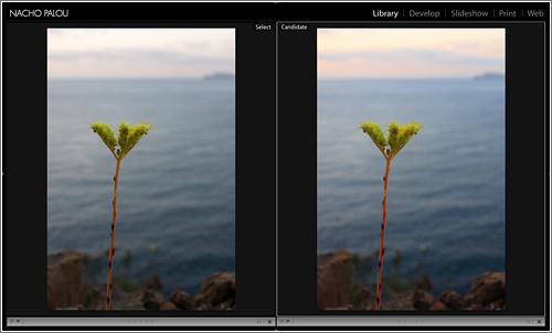 Perfiles de Cámara de Adobe. Ejemplo en Lightroom