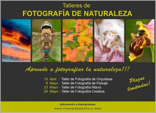 talleres-fotografia-naturaleza.jpg