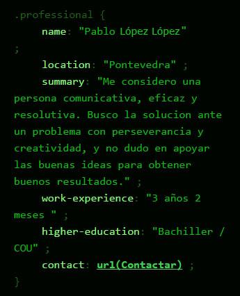 Tecnoempleo: Perfil CSS