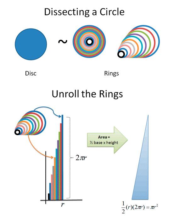 Disc Rings
