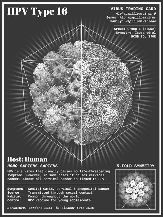 El virus el papiloma humano por Eleanor Lutz