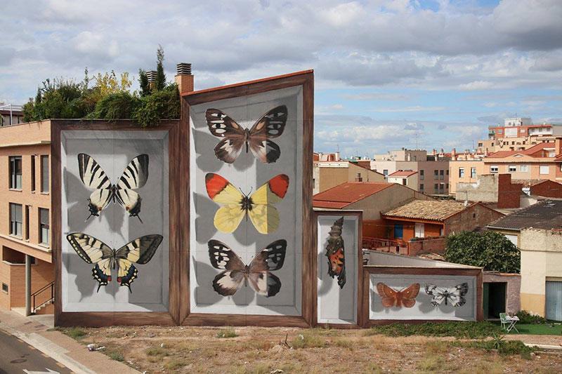 Mariposas de Aragón