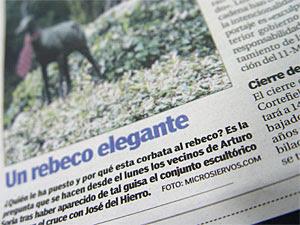 Rebeco elegante / 20 Minutos (CC) Alvy