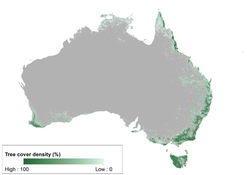 No hay muchos árboles en Australia