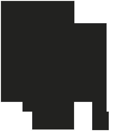 Logo del informe