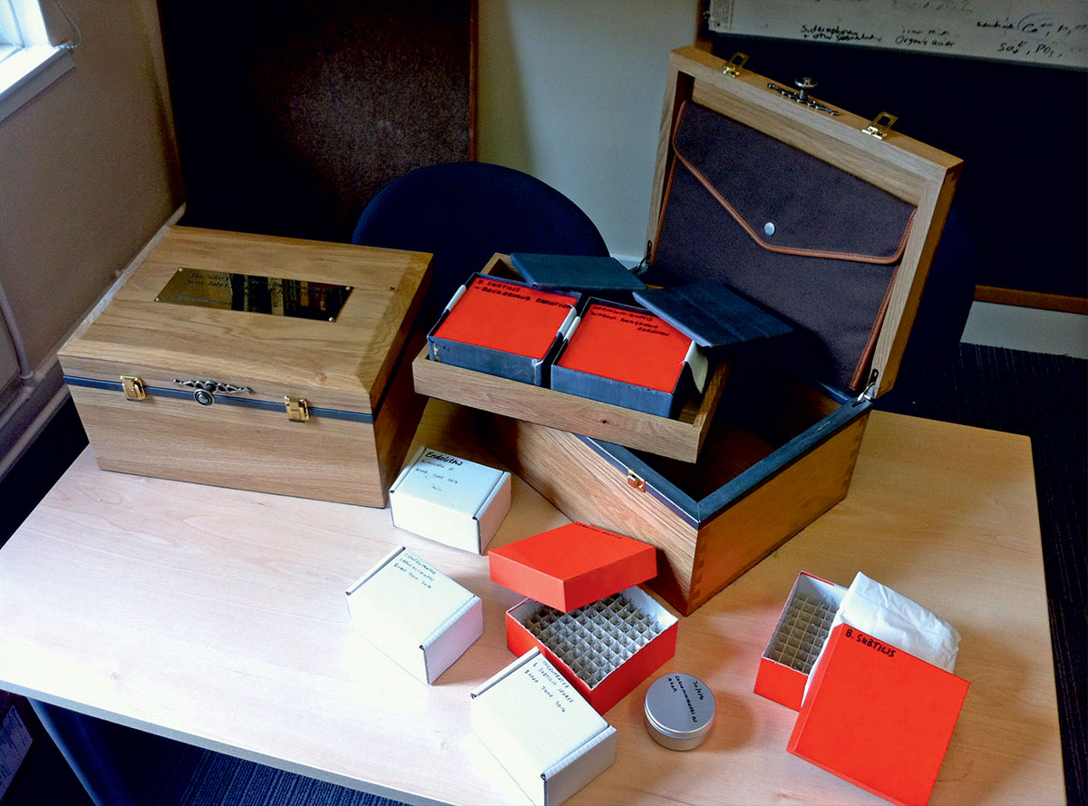 Materiales del experimento