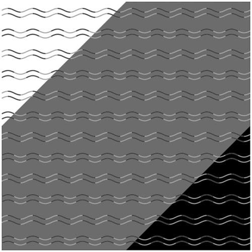 La ilusión de la ceguera a la curvatura / Kohske Takahashi