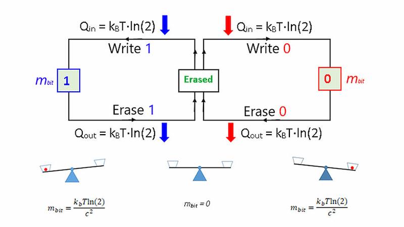 The mass-energy-information equivalence principle