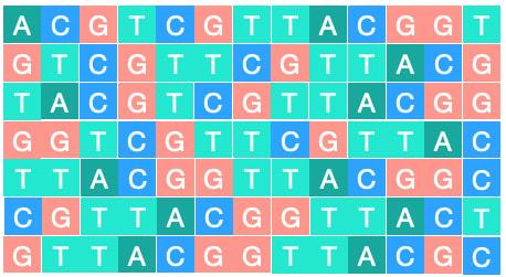 ADN_ACGT / (CC0)