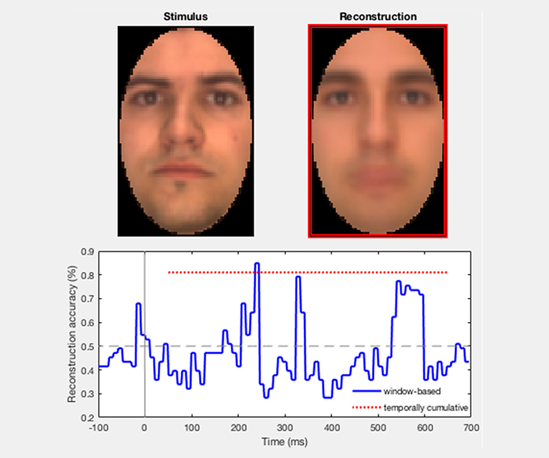 The Neural Dynamics of Facial Identity Processing: Insights from EEG-Based Pattern Analysis and Image Reconstruction / U of T