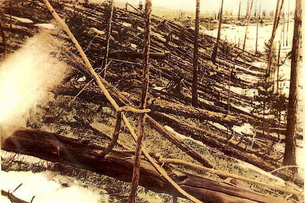 Árboles caídos en la zona de Tunguska