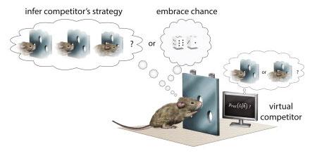 Ratas y Azar