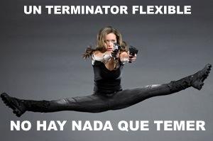 terminator-grau-th-flexible.jpg