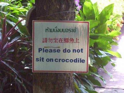Por favor no sentarse en el cocodrilo