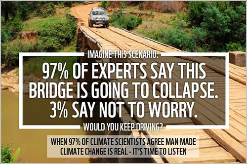 Wwf-Bridge