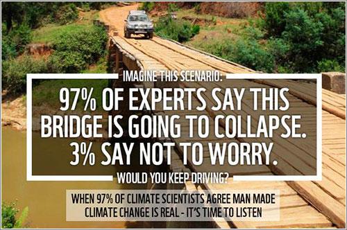 Wwf-Bridge